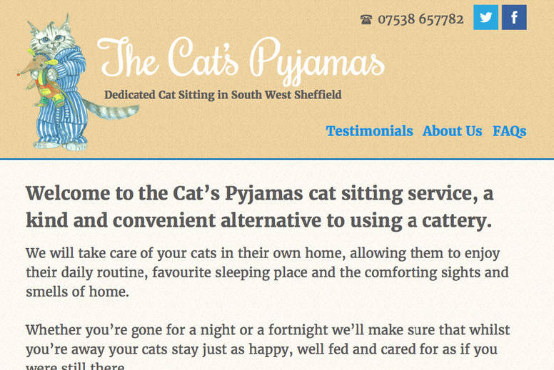 Cat's Pyjamas website screen grab